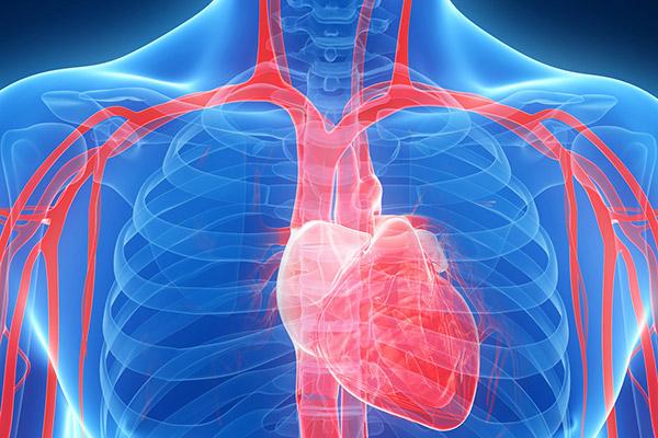 Gefäßuntersuchung Koblenz - Herzschlagader untersuchen